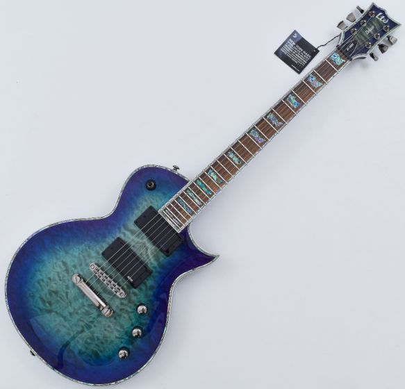 ESP LTD EC-1000 Electric Guitar in Violet Shadow LEC1000VSH