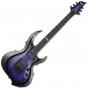 ESP E-II FRX FM RDB Reindeer Blue Electric Guitar EIIFRXFMRDB