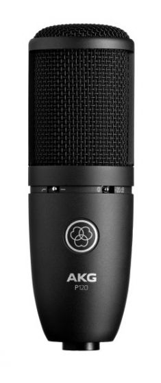 AKG P120 High-Performance General Purpose Recording Microphone 3101H00400