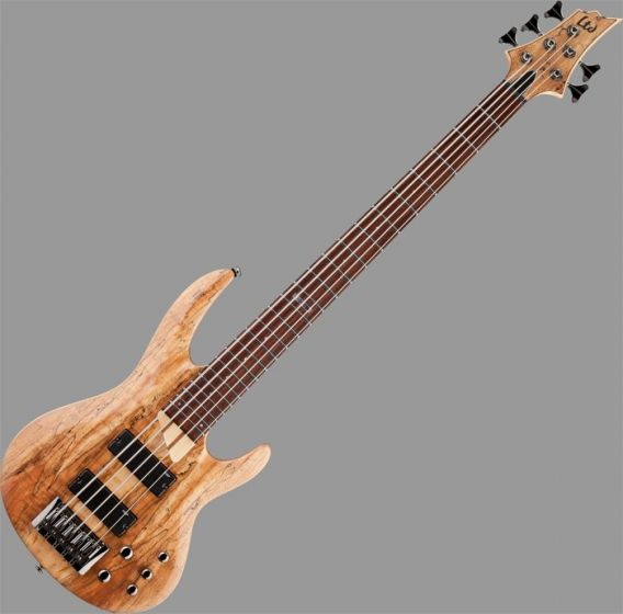 ESP LTD B-205SM Bass Guitar in Natural Stain Finish LB205SMNS