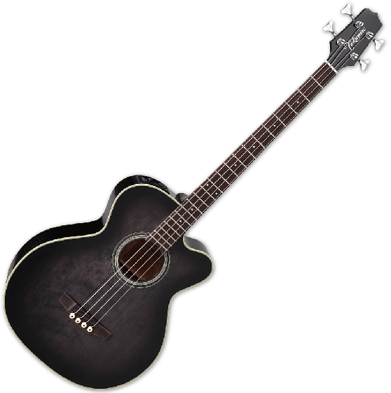 Takamine PB5 SBL Pro Series Acoustic Guitar in See Thru Black TAKPB5SBL