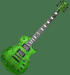 ESP LTD Deluxe EC-1000 Electric Guitar in Swirl Green Finish LXEC1000SWG