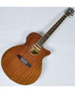 Ibanez AEG12II-NT AEG Series Acoustic Electric Guitar in Natural High Gloss Finish AEG12IINT