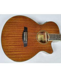 Ibanez AEG12II-NT AEG Series Acoustic Electric Guitar in Natural High Gloss Finish