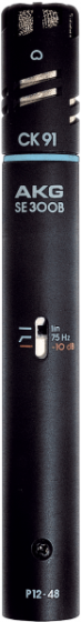 AKG C391 B High Performance Condenser Microphone
