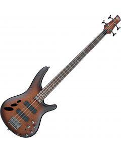Ibanez SR Standard SR30TH4 Semi-Hollow Electric Bass Natural Browned Burst Flat SR30TH4NNF